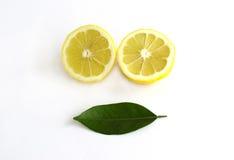 Citron coupé en tranches Images libres de droits