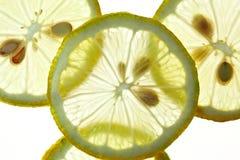 Citron coupé en tranches d'isolement sur le blanc Photographie stock libre de droits