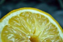 Citron d'agrume photo libre de droits