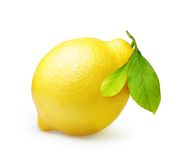 Citron d'isolement sur le blanc Photo stock