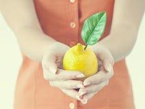 Citron de fixation de fille Images stock