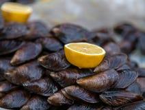 Citron de mollusque d'huître photographie stock