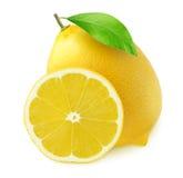 Citron entier et une tranche d'isolement sur le blanc Images libres de droits