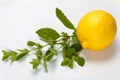 Citron et baume de citron Image libre de droits