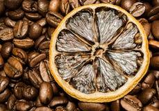 Citron et grains de café secs Photographie stock