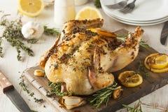 Citron et Herb Whole Chicken faits maison photo libre de droits