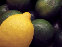Citron et limette Photographie stock