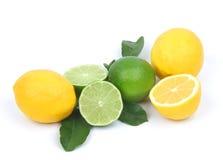 Citron et limette d'isolement sur le fond blanc Image stock