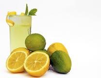 Citron et limettes Photographie stock libre de droits