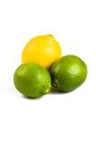 Citron et limettes frais Image libre de droits