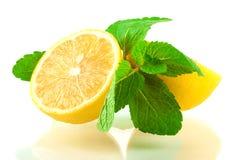 Citron et menthe photos stock