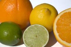 Citron et orange Image stock