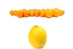 Citron et oranges Image stock
