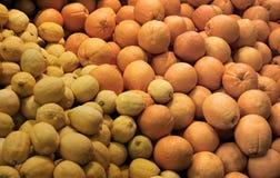 Citron et oranges frais Photos libres de droits