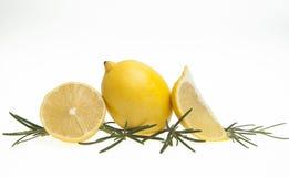Citron et romarin Image libre de droits
