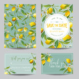 Citron, feuilles et fleurs Carte de mariage Carte _1 d'invitation Photographie stock