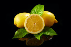 Citron frais Photos stock