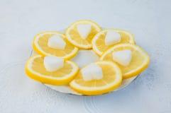 Citron frais avec du sucre Image stock
