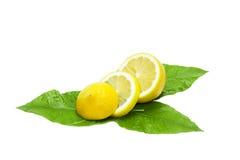 Citron frais coupé en tranches sur les lames vertes Photos libres de droits