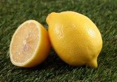 Citron frais s'étendant sur l'herbe verte images libres de droits