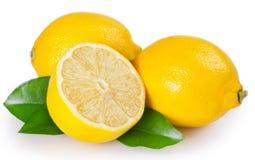 Citron frais sur le fond blanc photo stock