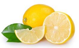 Citron frais sur le fond blanc image libre de droits