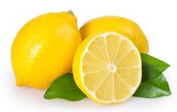 Citron frais sur le fond blanc photographie stock libre de droits