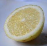 Citron - guling Royaltyfria Foton