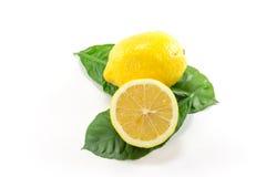 Citron jaune d'isolement Photo libre de droits