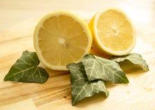Citron limefrukt royaltyfri fotografi