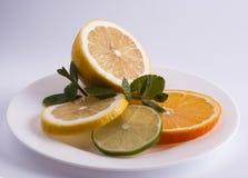 Citron, limefrukt och apelsin royaltyfri fotografi
