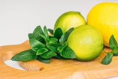 Citron, limefrukt och mintkaramell på ett träbräde royaltyfri fotografi