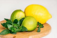 Citron, limefrukt och mintkaramell på ett träbräde arkivbilder