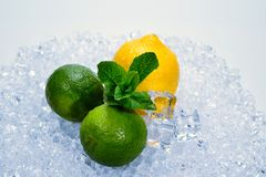 Citron, limefrukt och mintkaramell på is royaltyfri bild