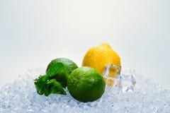 Citron, limefrukt och mintkaramell p? is arkivfoto