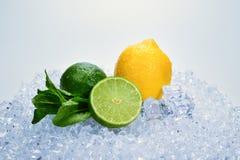 Citron, limefrukt och mintkaramell p? is arkivfoton