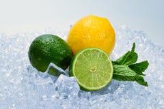 Citron, limefrukt och mintkaramell p? is royaltyfria bilder