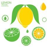 Citron Limette illustration stock
