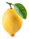 Citron med bladet Fotografering för Bildbyråer
