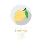 Citron med en bladvektorillustration Stock Illustrationer