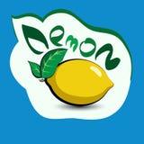 Citron med titeln på etiketten Klistermärke med ecoprodukten och Royaltyfri Bild