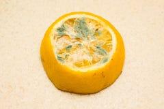 Citron moisi sur un fond clair Nourritures corrompues qui sont dangereuses pour le consumption_ photographie stock