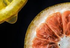 Citron och apelsin Arkivbild