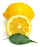 Citron och blad Arkivfoto