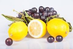 Citron och druvor royaltyfria foton