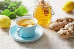 Citron- och ingefärate med honung royaltyfria foton
