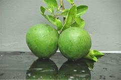 Citron och leaves arkivbild