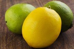 Citron och limefrukt fotografering för bildbyråer
