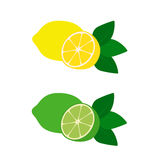 Citron och limefrukt vektor illustrationer