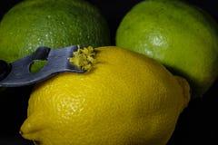 Citron och limefrukter arkivfoto